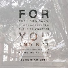 My life verse. For His plans are always way better than mine. #His