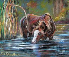 Salt River Peace Pastel  - Salt River Peace Fine Art Print