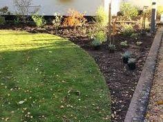 easy garden ideas along fence line Garden Ideas Along Fence Line, Soil Texture, Soil Improvement, Replant, Rose Bush, Organic Matter, New Beds, Easy Garden, Small Gardens