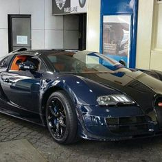 Dog driving #Bugatti #Veyron  Photo re-posted from Twitter account @BHSuperCars