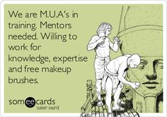 We are M.U.A's in training. Mentors needed. Willing to work for knowledge, expertise and free makeup brushes.