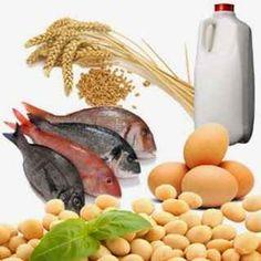 Makanan Penambah Hormon Testosteron Untuk Pria Dewasa