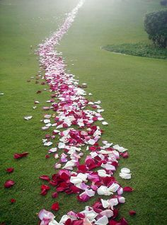 Valentine's Day path..i would love it if someone did this for me...with a surprise waiting for me at the end.
