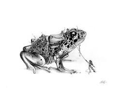 Autor: Laura de Vanessa Título: Obstinate Frog Técnica: Grafito