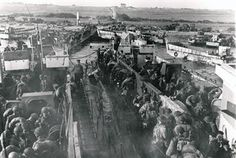 Log-jam on Juno Beach. Exhibition Image One