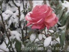 ♥ERNESTO CORTAZAR  - Autumn Rose♥ ---------Perfect!  Love at first listen!!!!! ..........................................wonderful...............................................wonderful!