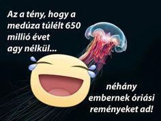(1) Száz ki nem mondott szó Funny Memes, Hilarious, Jokes, Einstein, Bff, Funny Pictures, Thoughts, Fanny Pics, Husky Jokes