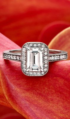 This sophisticated antique-style ring features a halo of pavé-set diamonds.