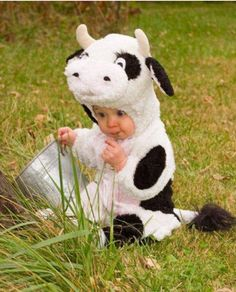 Who does not love babies) in costumes? It is probably one of the most adorable things. Here's 50 of the cutest, most adorable and first Halloween costumes for your Baby! Cow Halloween Costume, Halloween Bebes, Baby Boy Halloween, Family Halloween, Cute Funny Babies, Funny Kids, Funny Cute, Cute Kids, Super Funny