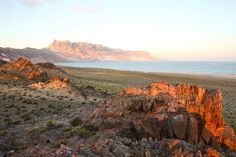 Google Image Result for http://www.puretravel.com/uploadedresources/continents/subcontinents/countries/Yemen%2520Socotra%2520Island_20090615170804.jpg