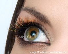 1a56068fd3f 16 Best Xtreme Lashes images in 2013 | Lash extensions, Eyelash ...