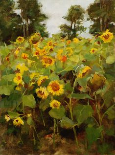 Fine Art Connoisseur - Putney Painters & Friends Exhibiting In Scottsdale For Second Consecutive Year Sunflowers And Daisies, Fields Of Gold, Painting Competition, Sunflower Art, Garden Painting, Flower Of Life, Beautiful Paintings, Creative Art, Landscape Paintings
