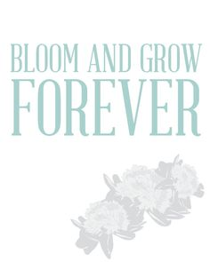 Edelweiss Bloom and Grow Forever Print by OrganicBird on Etsy, $15.00