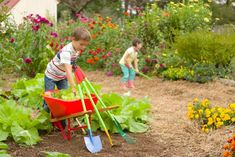 Normalize a gardening routine early, and your kids will pick it right up. Gardening teaches patience, precision, and is filled with rewards when you're able to enjoy the fruits (and veggies) of your labor. Take these tips to heart, and raise children who can appreciate and understand what goes into building and maintaining a garden.