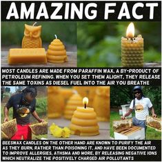 Use beeswax candles, paraffin candles are made with petroleum derivatives, chemical free life, healthy living The More You Know, Good To Know, Save Our Earth, Wtf Fun Facts, Random Facts, Funny Facts, Paraffin Wax, Beeswax Candles, Diy Candles