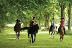 People riding at the beautiful Lucknam Park hotel near #Bath. Click visit below the picture to reach my boards and then follow me for more travel tips and other country house hotels.