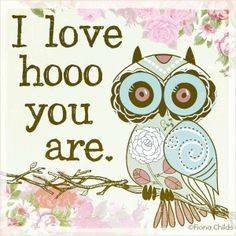 We are a store inpired in owls, that's why we have for you. A Best selecciont of Owl Pendants, Necklaces, Earrings, Rings and much more. Owl Quotes, Owl Sayings, Owl Pictures, Owl Pics, Beautiful Owl, Wise Owl, Love Is All, Painted Rocks, Artsy