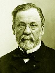 "Louis Pasteur - French chemist/biologist who made many contributions to science incl:  1. Yeast is an organism. 2. Pasteurization after fermentation kills microorganisms & prevents souring. 3. Identified parasite responsible for killing silkworms & saved French silk industry. 4. Proposed germ theory of disease urging doctors to use clean instruments, wash hands, & disinfect bandages. 5. Developed treatment to prevent anthrax. Named technique ""vaccination"" & applied it to chicken cholera…"