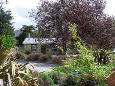 Paddy's Cottage, historic stone cottage near Alexandra, Central Otago | Bookabach.co.nz/8109
