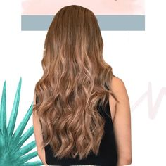 Creating dimensions with Richy Hair extensions results in a very natural, healthy and thick hair - just like what @samchurchhair has achieved for her client. We've got a variety of lengths and colours to choose from so u can easily colour match it to your clients desire. DM for more info 📲📲📞 . Colour Match, Half Up Half Down, Thick Hair, Beauty Routines, Ponytail, Hair Extensions, Wedding Hairstyles, Your Hair, Braids