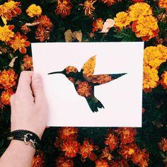 «Archive. Hummingbirds Еще одна тема из архива. Когда-то была отбракована, а теперь нравится Добрый вечер, дорогие все»