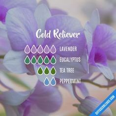 Cold Reliever - Essential Oil Diffuser Blend
