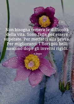 Italian Quotes, Quotes About Everything, Flowers For You, Garden Shop, Meaningful Quotes, Never Give Up, Twitter Sign Up, Crochet Hats, Positivity