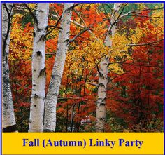 Fall (Autumn) Linky Party!  Over 150 Links to blog posts, freebies, and paid products!  Halloween, Thanksgiving, Veterans Day, Fall, etc.