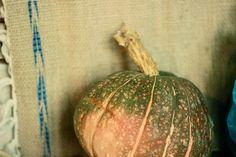 sopa de legumes doces - varatojo