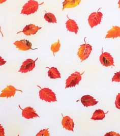 "Cloth Napkins Harvest Cotton Fabric 43""-Tossed Tonal Leaves"