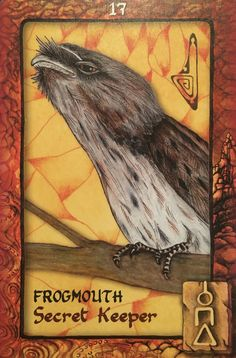 """June 14/2017 Daily Angel Oracle Card: Frogmouth, from the Animal Dreaming Oracle Card deck, by Scott Alexander King, artwork by Karen Branchflower Frogmouth: """"Secret Keeper"""" """"The Frogmouth&#82…"""
