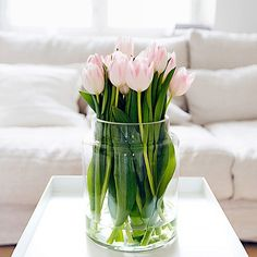 palest pink tulips