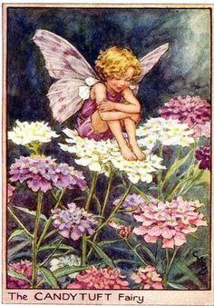Sueños de niña: Cicely Mary Barker,Hadas del jardín