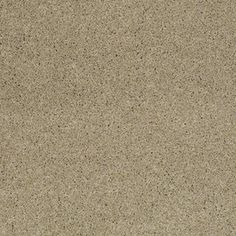 Color: 00300 Romney Marsh CCS10 Pashmina I - Shaw Caress Carpet Georgia Carpet Industries
