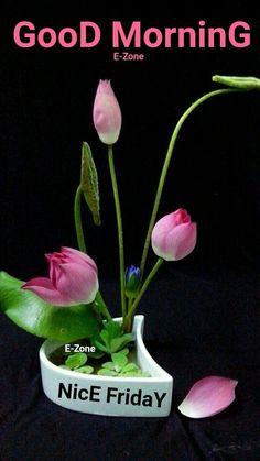 Beautiful Morning Images, Beautiful Flowers Images, Flower Images, Beautiful Roses, Good Morning Happy Monday, Good Morning Sunshine, Morning Wish, Good Morning Quotes, Sunday