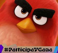 #ParticipaYGana con @CineBlancica y #DesdeLaButaca!! Sorteamos un calendario de #AngryBirds la película! Ve nuestro programa por @Ip_tvdigital consigue las 5 partes de la frase y pública un #Selfie con la frase en un papel.  #DLB #DesdeLaButaca #Cine #Cinema #Pelicula #Movie #Cinefilos #cinephile #movienight #movietime #InstaMovie #participa #Sorteo #Premio #Concurso Lee más al respecto en http://ift.tt/1hWgTZH Lo mejor del Cine lo disfrutas #DesdeLaButaca Siguenos en redes sociales como…