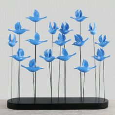 Mavi Güvercinler TL220