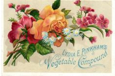 Victorian Advertising Trade Card Lydia Pinkham Vegetable Compound Bouquet | eBay