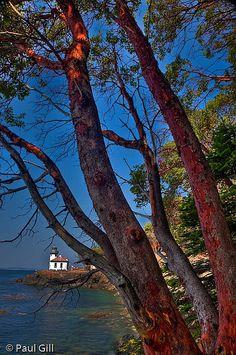 Lime Kiln Lighthouse, San Juan Island, WA
