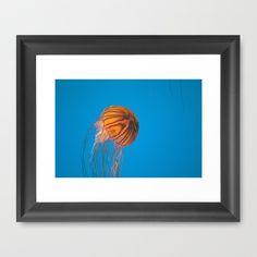 Baltimore Aquarium Series 10 by Sarah Shanely Photography $31.00