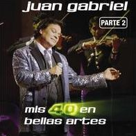 Mis 40 en Bellas Artes: En Vivo Desde Bellas Artes, México 2013