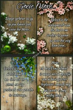 Good Morning Good Night, Good Morning Wishes, Good Morning Quotes, Evening Greetings, Goeie Nag, Goeie More, Afrikaans Quotes, Prayer Quotes, Love Rose