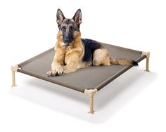 Professional German Shepherd Directory: German Shepherd Beds and Crate Pads