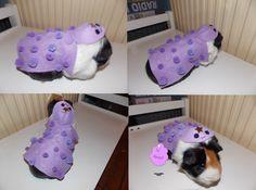 Lumpy Space Princess Guinea Pig Costume by ~OreoTnettenbaSnood on deviantART