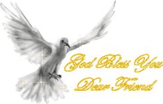 Gott segne dich, lieben Freund God Bless You Dear Friend God Bless You Quotes, Angels Among Us, Jesus Is Lord, Jesus Christ, Angels In Heaven, Image Editing, True Friends, Gods Love, Picture Quotes