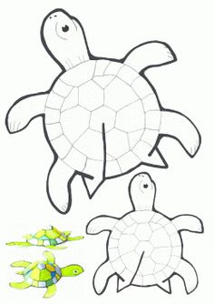 Kaplumbağa Kalıbı