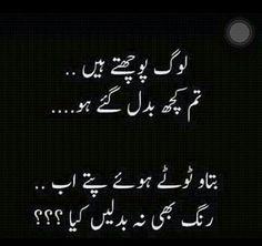 796 Best Urdu Adab Poetry Images Urdu Poetry Urdu Quotes