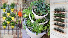 Znalezione obrazy dla zapytania zioła na balkonie aranżacja