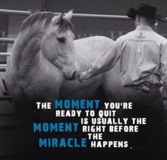 And just think they have moment in there twice because those are the most special things in life is all the moments I have whether theyre good or bad Rodeo Quotes, Equestrian Quotes, Equine Quotes, Senior Quotes, Great Quotes, Quotes To Live By, Life Quotes, Wall Quotes, Inspirational Horse Quotes