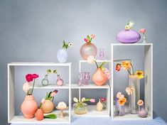 Pretty pastels for spring. Styling by Sarah Riga, Photo by Gregor Titze for Falstaff LIVING Riga, Pretty Pastel, Orange, Highlights, Spring, Tableware, Home Decor, Style, Pastel